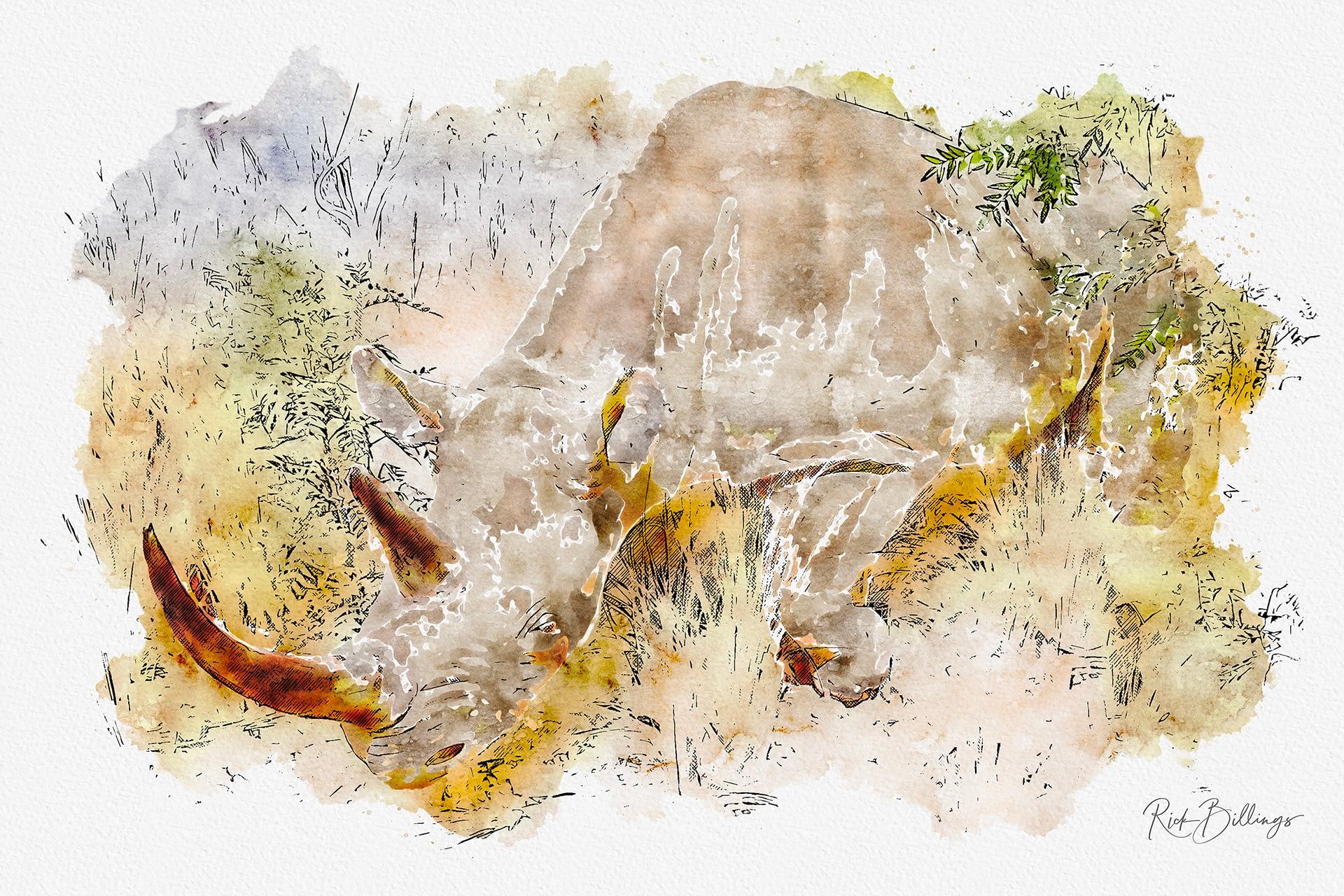 No 1147 2019 Rhino